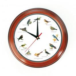 Vogeluhr mit Original-Vogelstimmen - Freisteller