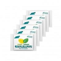 Das Kaugummi Zitrone/Basilikum 6er-Set je 11 Dragees - Freisteller