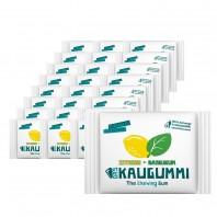 Das Kaugummi Zitrone/Basilikum  25er-Set je 11 Dragees - Freisteller