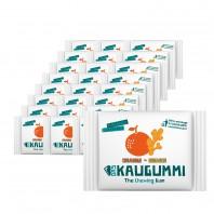 Das Kaugummi Orange/Ingwer  25er-Set je 11 Dragees - Freisteller