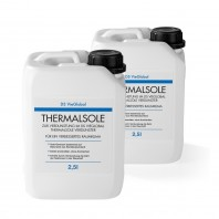 DS VieGlobal Thermalsole 2er-Set - 2x 2,5l