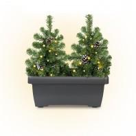 CHRISTmaxx LED-Tannenbäume im Blumenkasten 2in1 4,5V in Grün - Freisteller 1